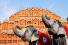 Charming Jaipur & Exciting Ranthambore Tour - Standard