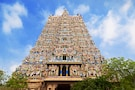 South India: Beaches-Temples-Wildlife