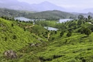 Amazing Holiday In Munnar