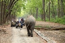 Lake Tour With Wildlife- Nainital & Corbett National Park