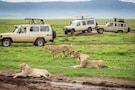 Ultimate Kenya Safari