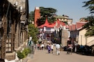 Hilly Shimla- Vacation In The Lush Greenery