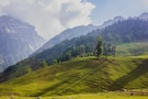 Heavenly Kashmir