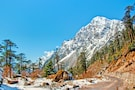 Silk Route Tour- Sikkim  Special