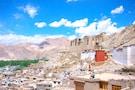 Exotic Leh Ladakh!