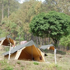 Jungle Camp Dhura