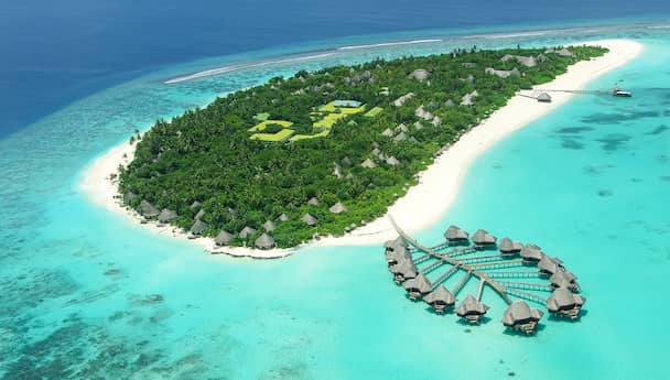 Romantic Maldives with Vivanta by Taj-Coral Reef