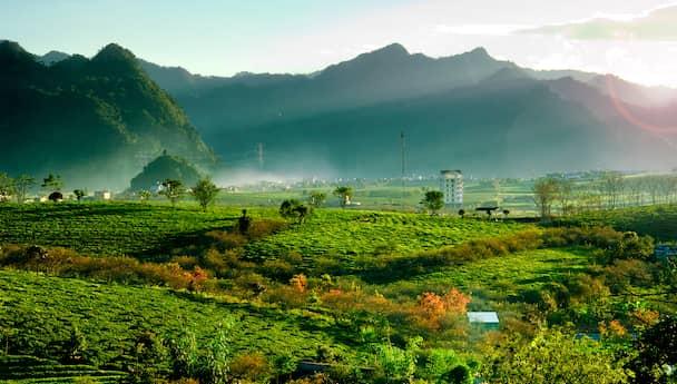 Hills & Backwaters- Amazing Kerala Tour