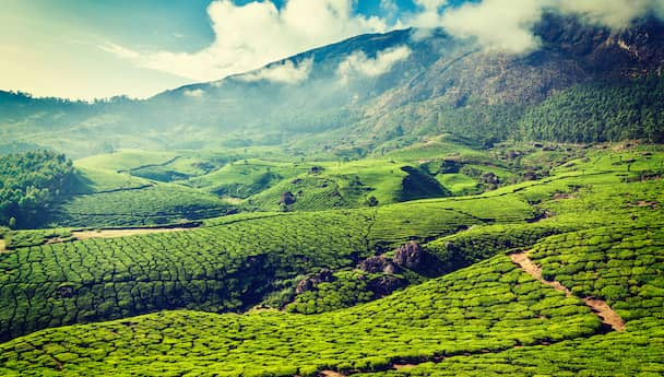 Best Of Kerala Tour- Marvel At Its Beauty!