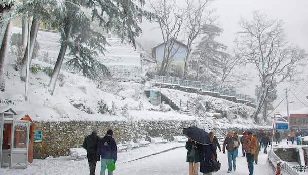 Blissful Shimla and Manali