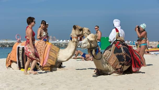 Dubai Delights!