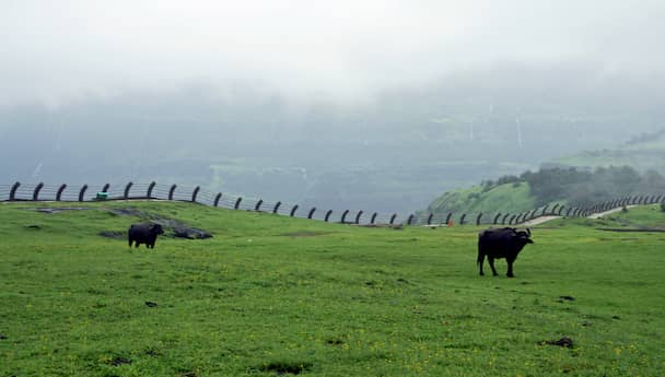 The Splendour Of Lonavla!