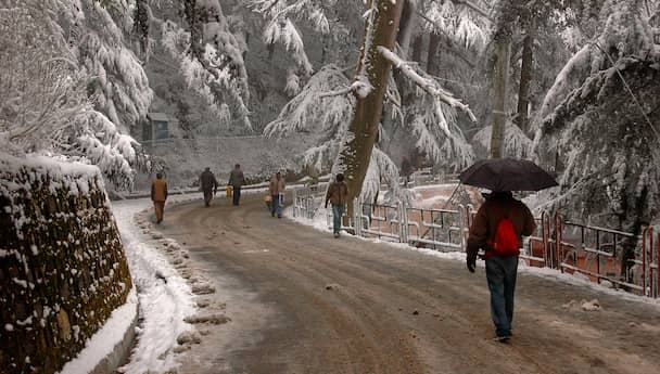 Hilly Shimla - Vacation In The Lush Greenery