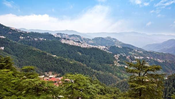 Alluring Shimla!