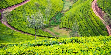 3 Places in Kerala for Those Who Like to Go Off the Beaten Track