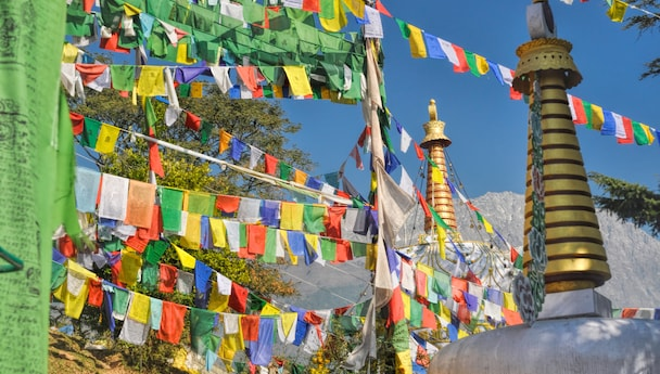 Best Of Dharamsala - Volvo Tour