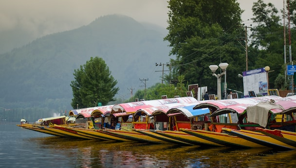 Awesome Kashmir