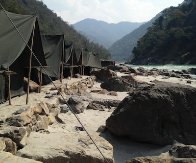 Retreat Jungle Camp,Rishikesh