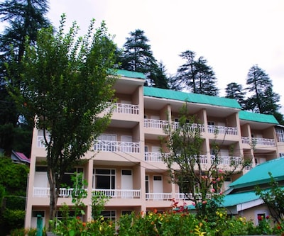 Hotel The Conifer,Manali