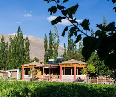 Uley Eco Resort,Leh