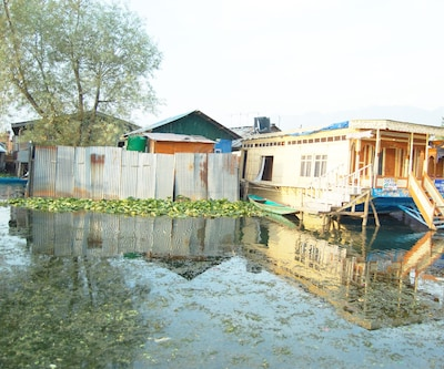 Kings Ring Houseboat,Srinagar