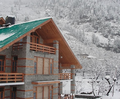 TG Stays Shaminala Village,Manali