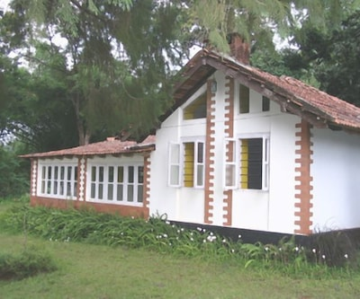 HillySide Estate,Coorg
