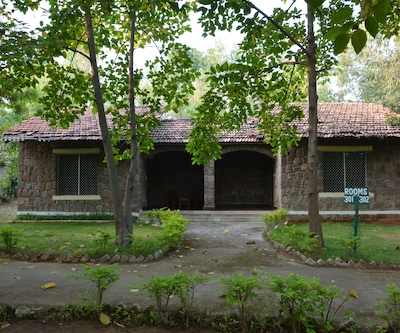 Mogli Jungle Resorts,Bandhavgarh