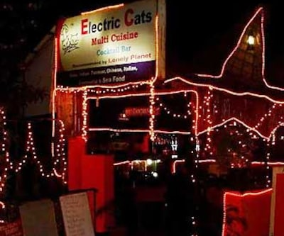 Electric Cats,Goa