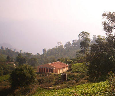 Artha Blue Mountain,Ooty