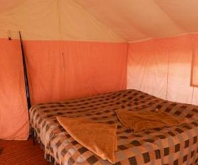 Royal Deluxe Camp, none,