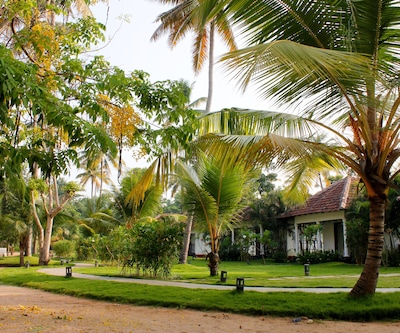 Marari Sands Beach Resort,Alleppey