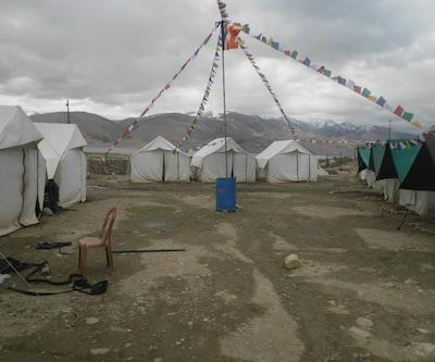 Golden Mark Camp - Tsomoriri,Leh