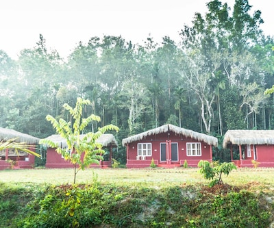 Keremane Estate - A Wandertrails Showcase,Coorg