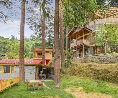 Cheerful stay snuggled in a breathtaking landscape,Manali