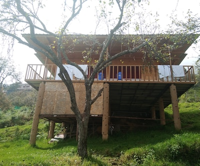 Wood House,Kodaikanal