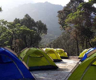 Campper Camp Ela Blooms,Wayanad