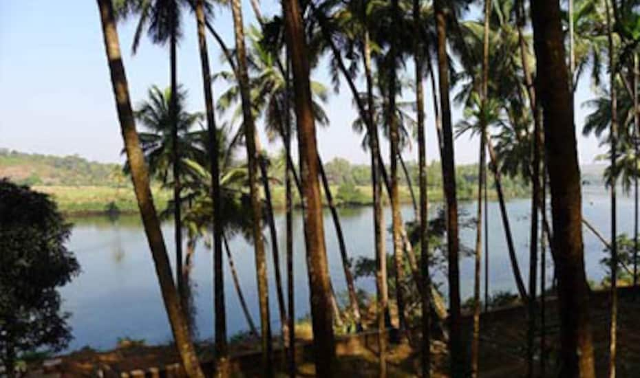 TG Stays Siolim, Siolim,