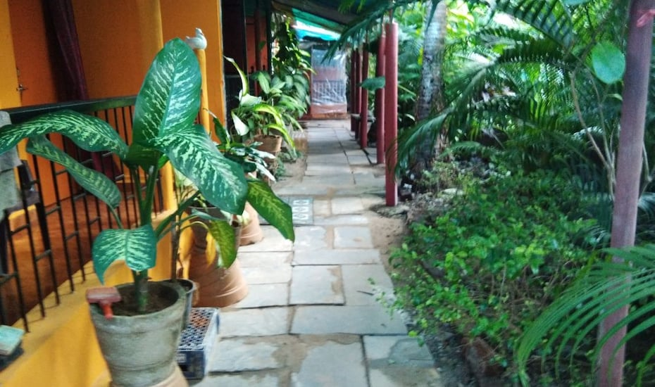 Oceanic Guest House, none,