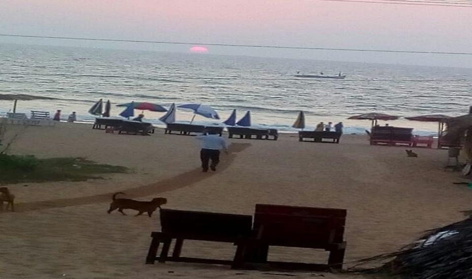 ZBR Beach Resort, Calangute Beach Road,