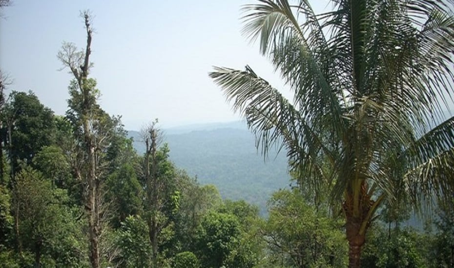 Discover Coorg Rolling Meadows, none,