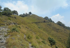 Benog Hill Trek