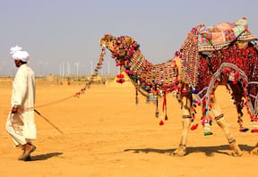 Camel Safari at Dera Village Retreat in Kalakho,Rajasthan