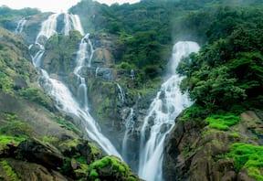 Dudhsagar Waterfall Trek from Mumbai