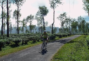 Bangalore to Cochin Cycling Tour