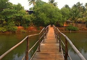Dudhsagar and Hivre Waterfall Trekking in Goa