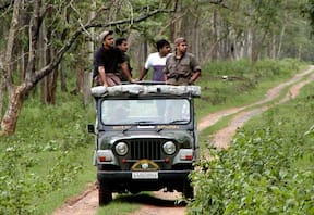 Wildlife Safari at Bandipur Safari Lodge, Bandipur