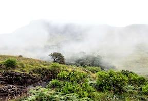 Andharban Monsoon Trek