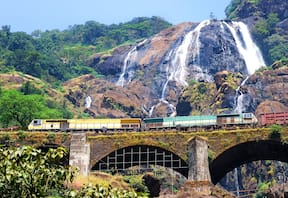 Trek to Dudhsagar Falls-Ex Bangalore