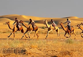 Camel Safari at Dera Dune Retreat in Jamba,Rajasthan
